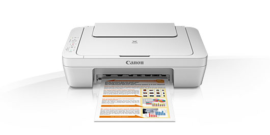 Multifunctional inkjet Canon Pixma MG2550