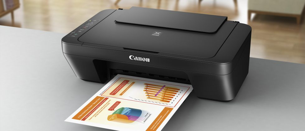 Multifunctional ink jet Canon Pixma MG2550s